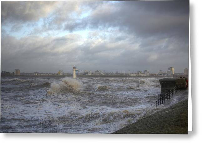 The Wild Mersey 2 Greeting Card