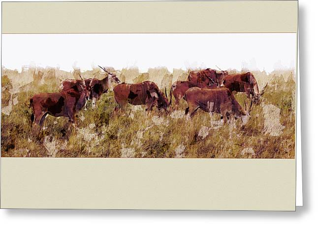 The Wilds Greeting Card by Ron Jones