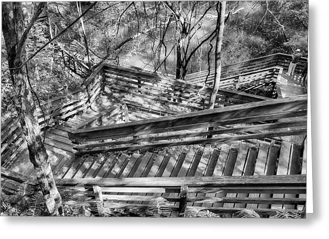 The Winding Stairs Greeting Card by Howard Salmon