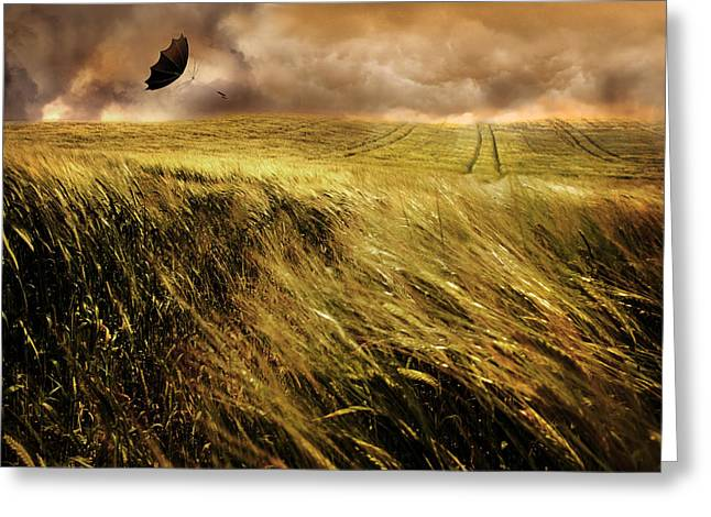 The Windy Day Greeting Card by Mal Bray