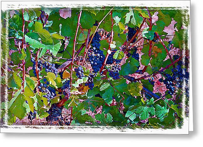 The Wine Maker II Greeting Card by Ken Evans