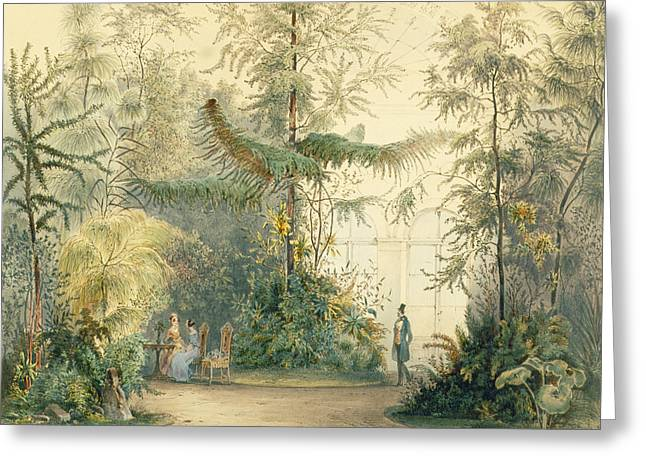 The Winter Garden Of The Hofburg Greeting Card by Austrian School