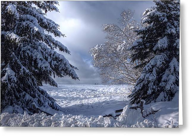 The Winter Pathway Greeting Card