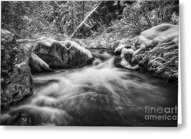 The Winter River Glow Bw Greeting Card by Mitch Johanson