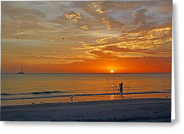 The Young Fisherman Greeting Card by HH Photography of Florida
