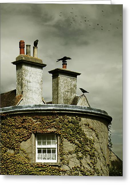 Thee Crows On Chimney's Greeting Card by Ethiriel  Photography