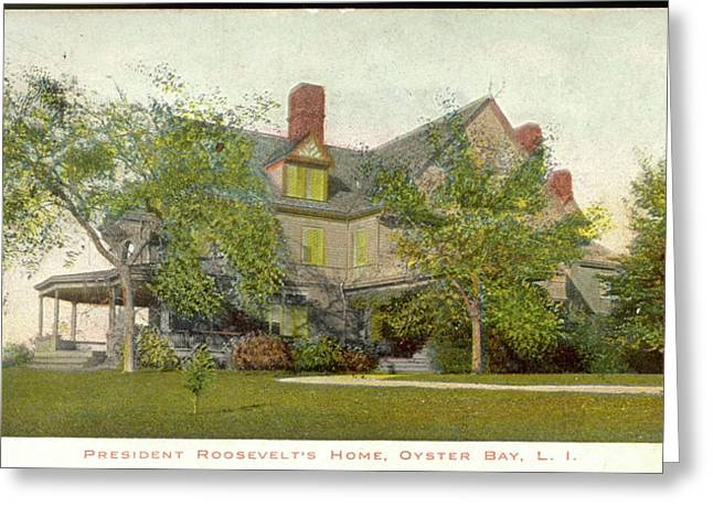 Theodore Roosevelt's Home At  Oyster Greeting Card