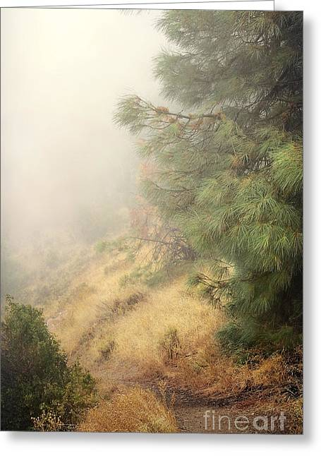 Greeting Card featuring the photograph There And Back Again 2 by Ellen Cotton
