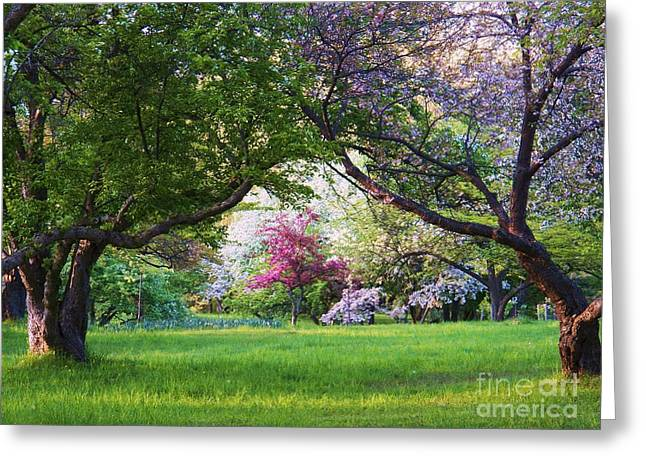 There Is No Place Like Spring Greeting Card