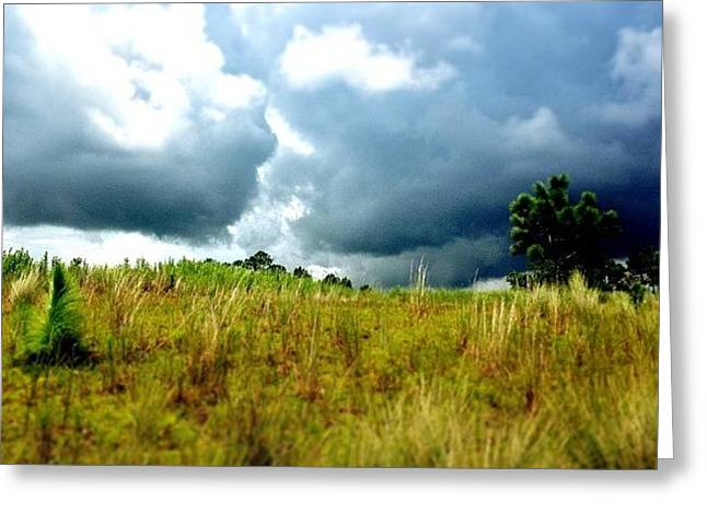 There's A Storm Brewing!!! #golf Greeting Card