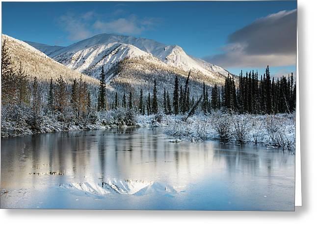 Thin Ice On A Pond Following A Fresh Greeting Card by Carl Johnson