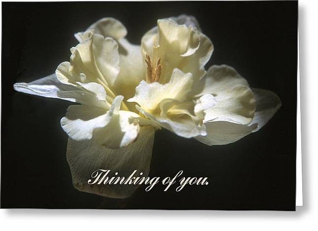 Thinking Of You. Greeting Card by Harold E McCray