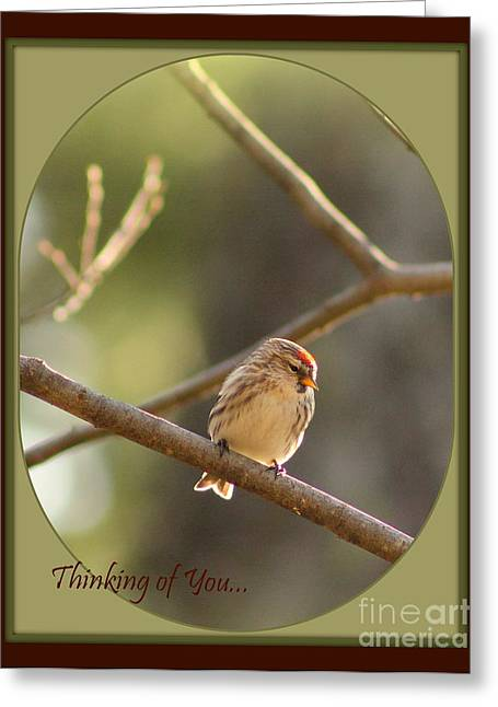 Thinking Of You Greeting Card by Leone Lund