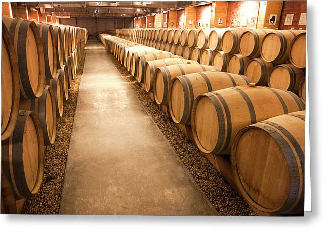 This Is A Storage Area For Wine Greeting Card by Mallorie Ostrowitz