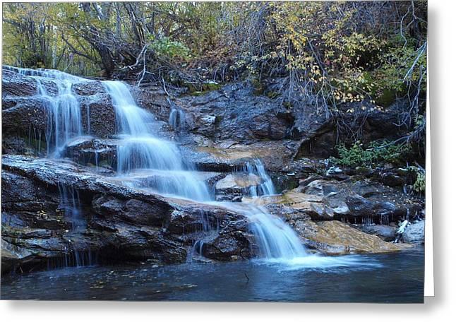 Thomas Creek Falls Greeting Card by Jenessa Rahn