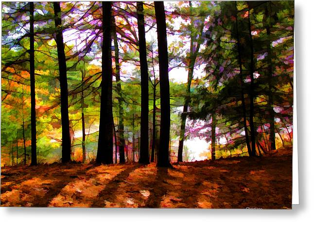 Thoreau's View Of Walden Pond Greeting Card by Tom Christiano