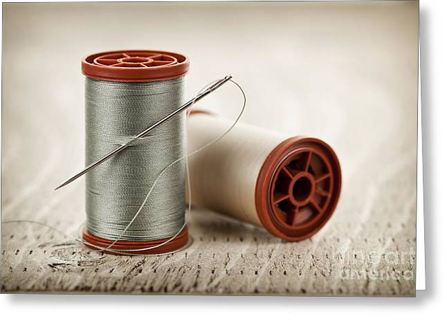 Thread And Needle Greeting Card by Elena Elisseeva