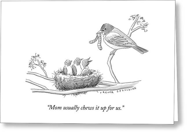 Three Baby Birds In A Nest Talk To A Grown Bird Greeting Card