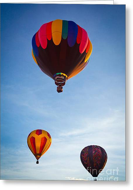 Three Balloons Greeting Card by Inge Johnsson