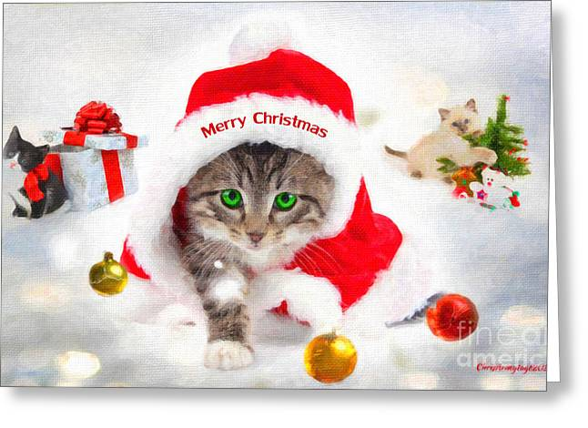 Greeting Card featuring the photograph Three Christmas Kittens by Chris Armytage