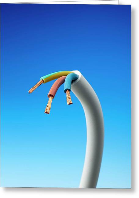 Three-core Electrical Cable Greeting Card