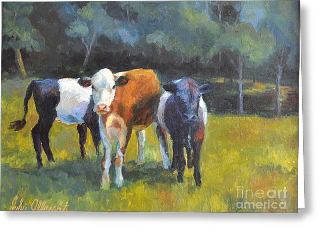 Three Cows Proud Greeting Card by John Albrecht
