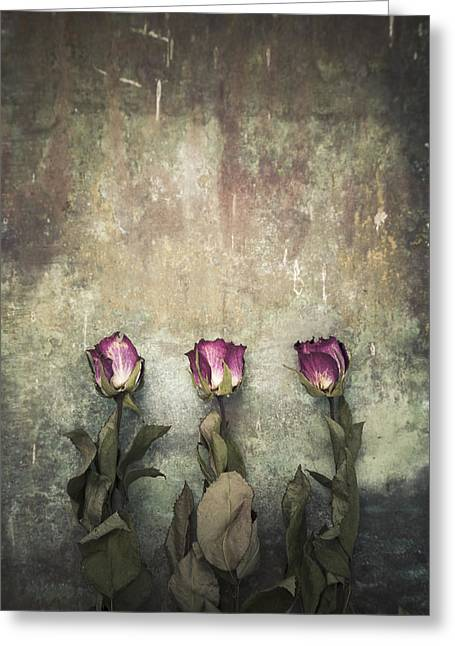Three Dried Roses Greeting Card