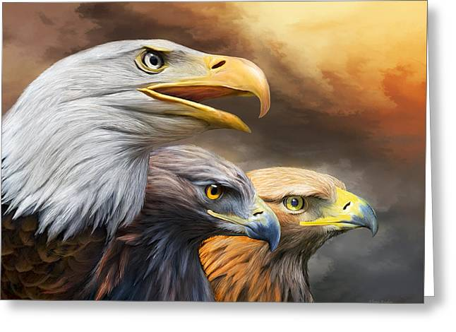 Three Eagles Greeting Card by Carol Cavalaris