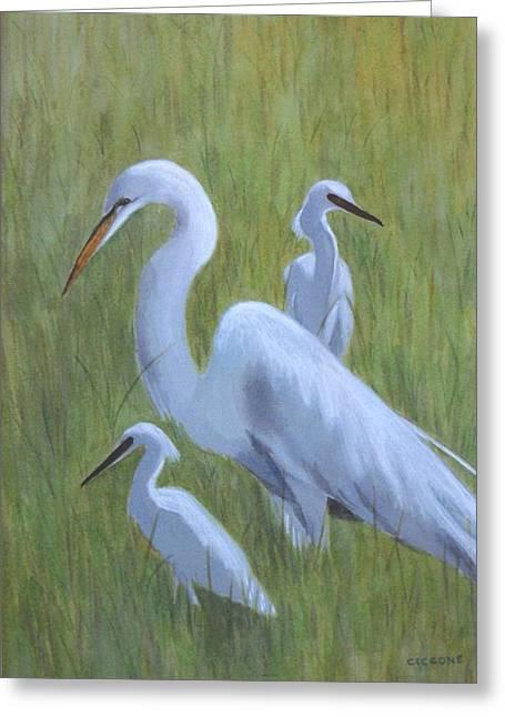 Three Egrets  Greeting Card