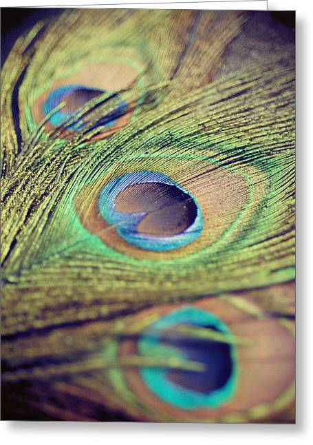 Three Feathers Greeting Card by Nastasia Cook