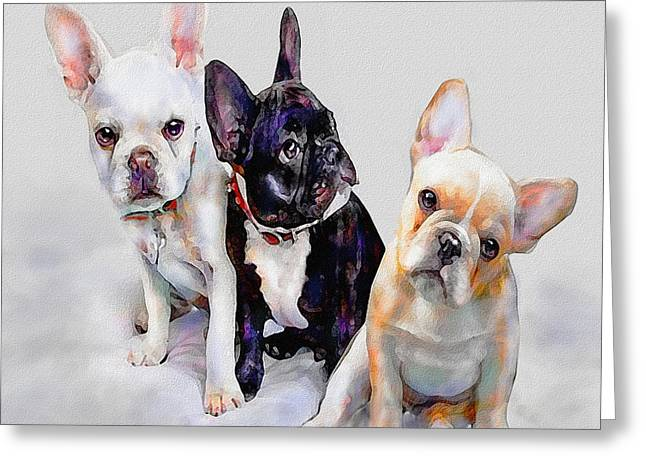 Three Frenchie Puppies Greeting Card