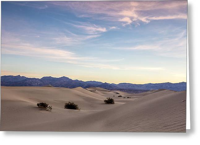 Three In The Sand Greeting Card by Jon Glaser