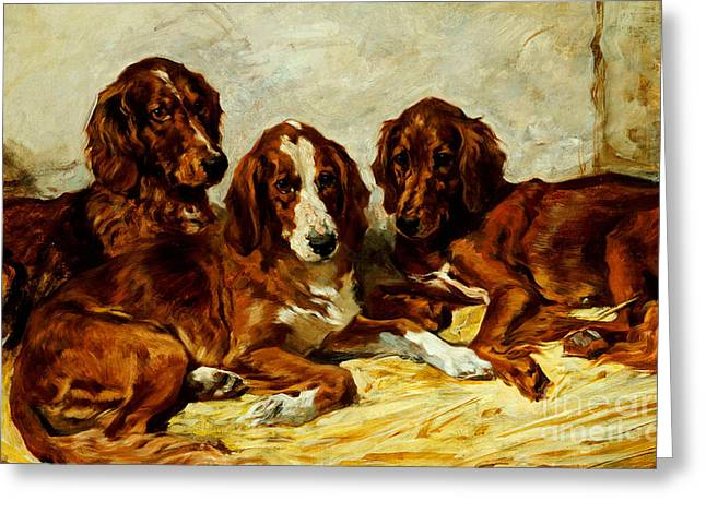 Three Irish Red Setters Greeting Card by John Emms