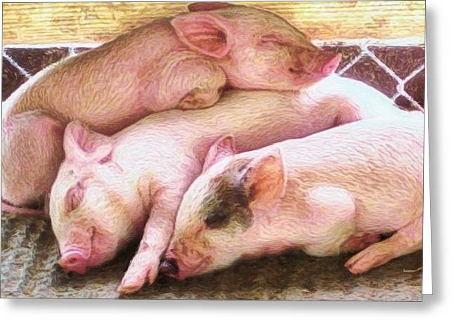 Three Little Piglets - Square Greeting Card