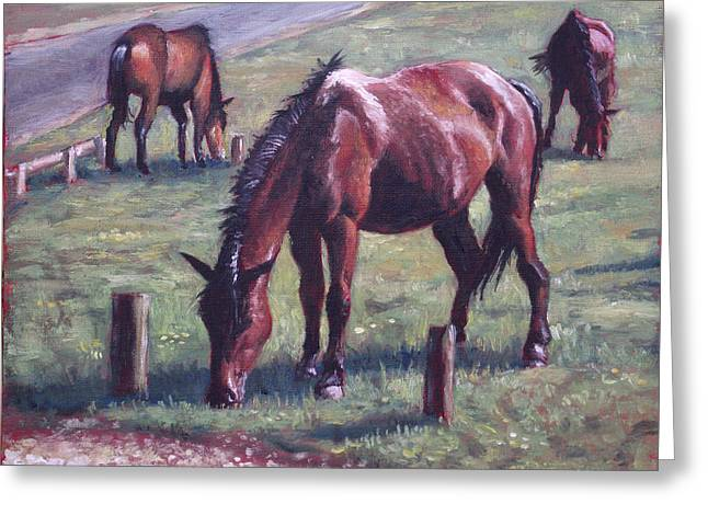 Three New Forest Horses On Grass Greeting Card