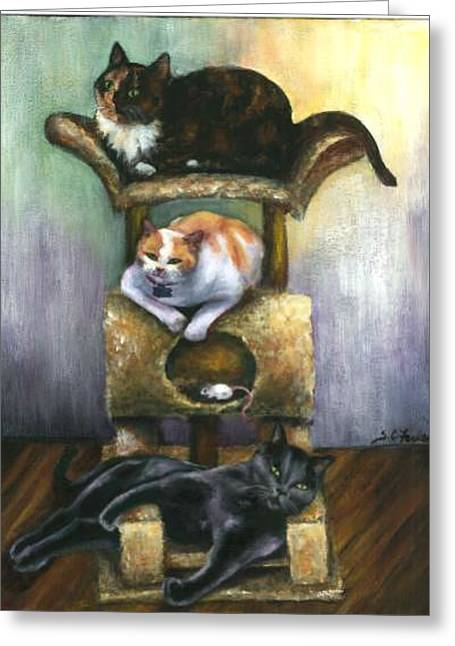 Three Oblivious Cats Greeting Card