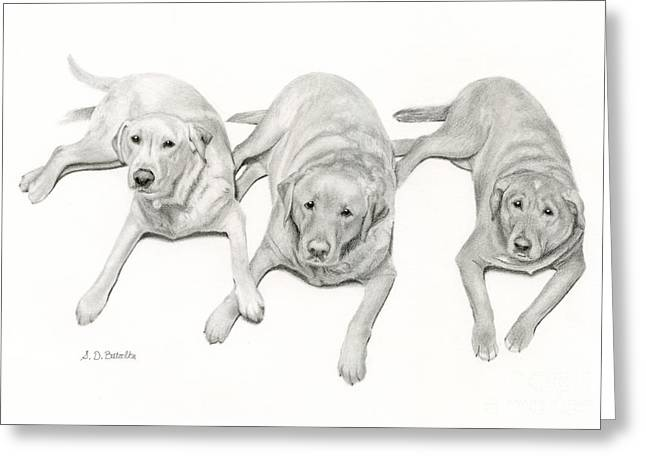 Three Of A Kind Greeting Card by Sarah Batalka
