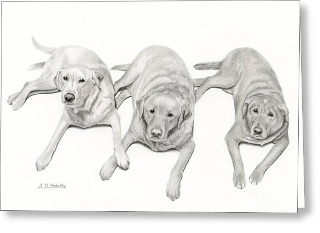 Three Of A Kind Greeting Card by Sarah Batalka