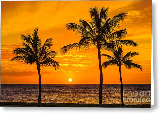 Three Palms Golden Sunset In Hawaii Greeting Card
