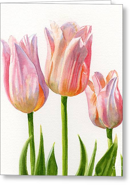 Three Peach Colored Tulips Square Design Greeting Card by Sharon Freeman