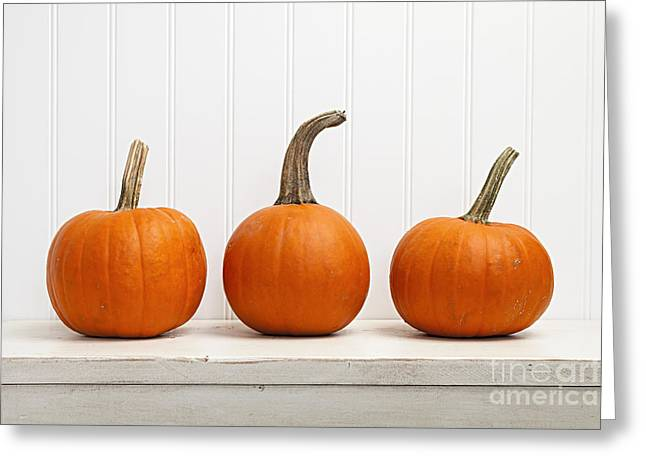 Three Pumpkins Greeting Card by Elena Elisseeva