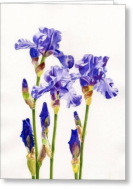 Three Purple Irises Greeting Card by Sharon Freeman