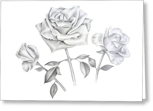Three Roses Greeting Card