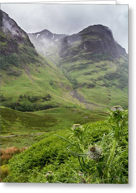 Three Sisters Of Glencoe Greeting Card by Denise McLaurin