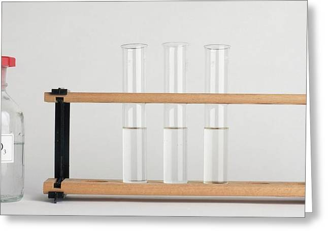 Three Test Tubes On Rack And Agno3 Greeting Card by Dorling Kindersley/uig