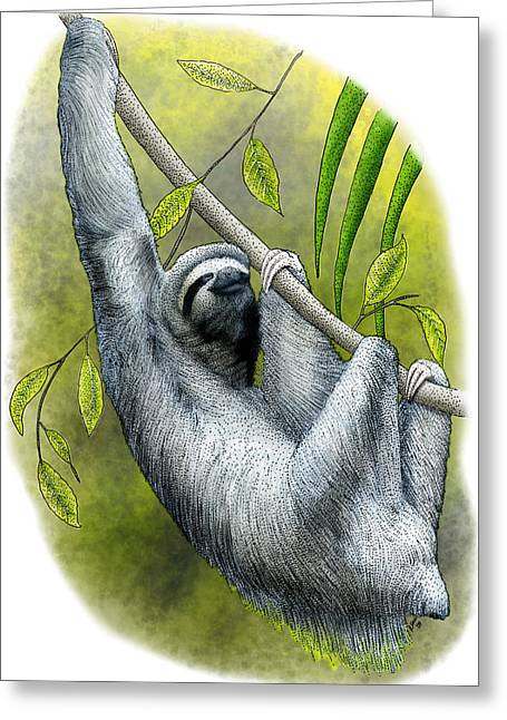 Three-toed Sloth Greeting Card by Roger Hall