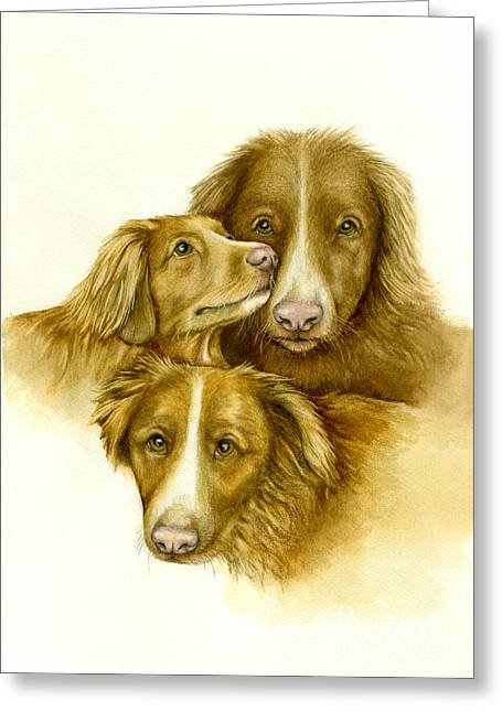 Three Toller Dogs Greeting Card