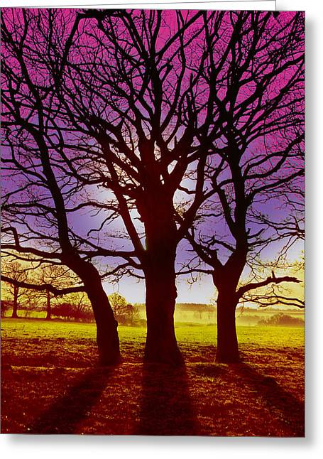Greeting Card featuring the digital art Three Trees by David Davies