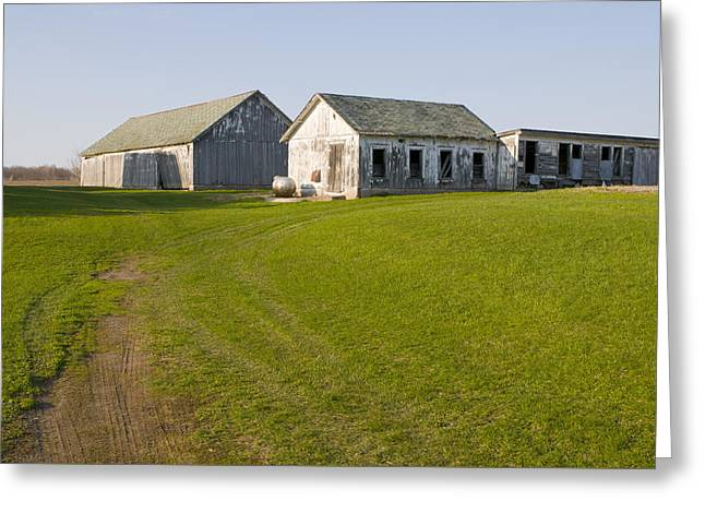 Three Weathered Farm Buildings Greeting Card