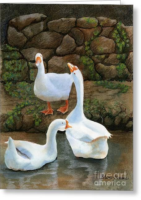 Three White Ducks Greeting Card by Sharon Freeman